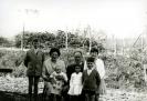 ARRUARTE: ERAUSKIN ETXABE FAMILIA