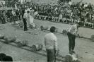 URTSUBI: ZUBELDIA ETXEBERRIA FAMILIA